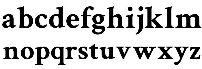 Crimson Text Bold Font Litere mici