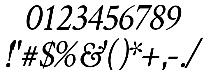 Crimson Text Italic Font OTHER CHARS