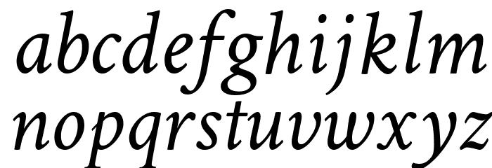 Crimson Text Italic Font LOWERCASE
