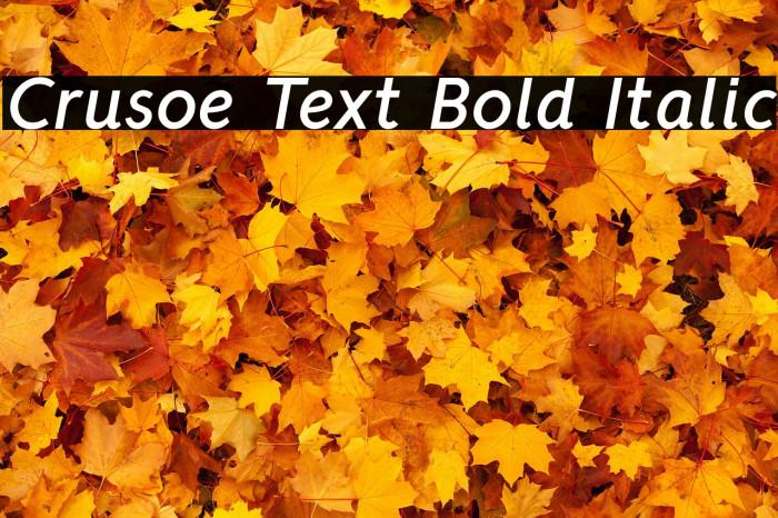 Crusoe Text Bold Italic Font examples