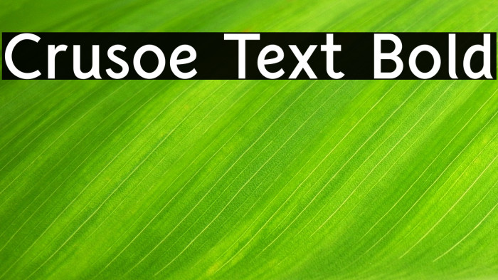 Crusoe Text Bold Polices examples