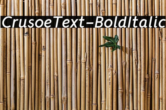 CrusoeText-BoldItalic Font examples