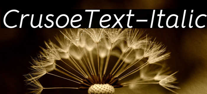 CrusoeText-Italic फ़ॉन्ट examples