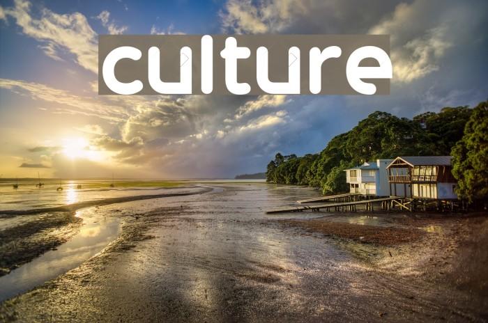 culture Font examples