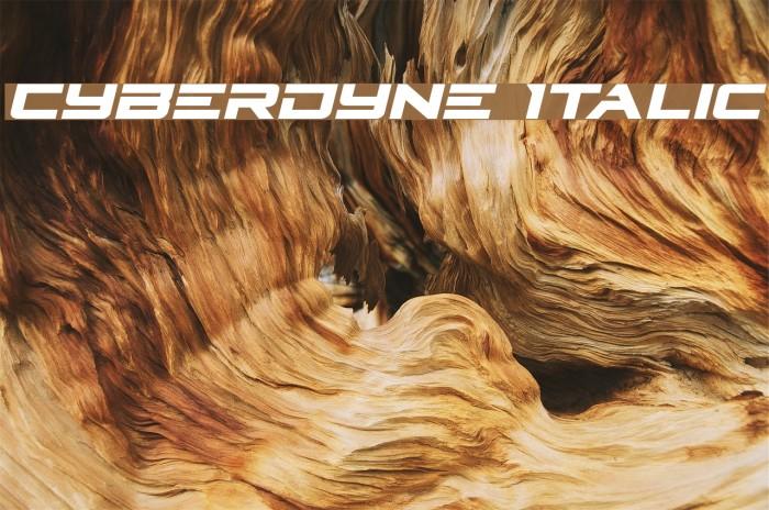Cyberdyne Italic Fonte examples