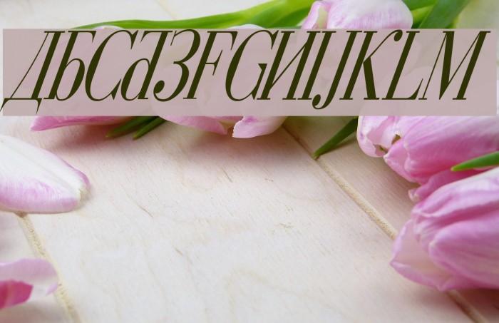 Cyberia Condensed Italic Font examples