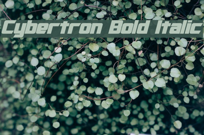 Cybertron Bold Italic Font examples