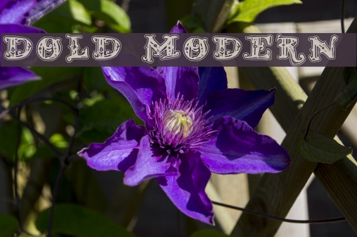 D_OLD MODERN 2 Fonte examples