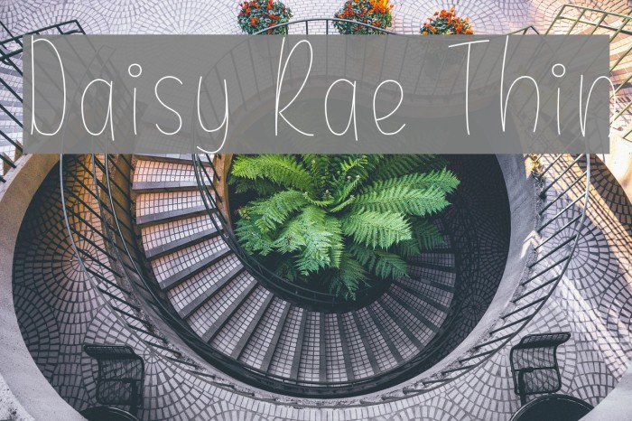 Daisy Rae Thin Font examples