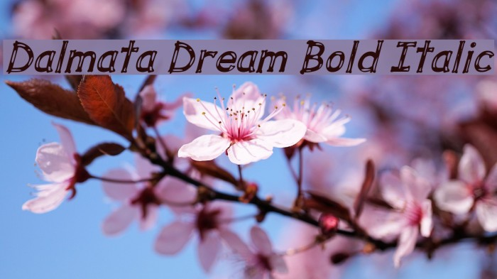 Dalmata Dream Bold Italic Font examples