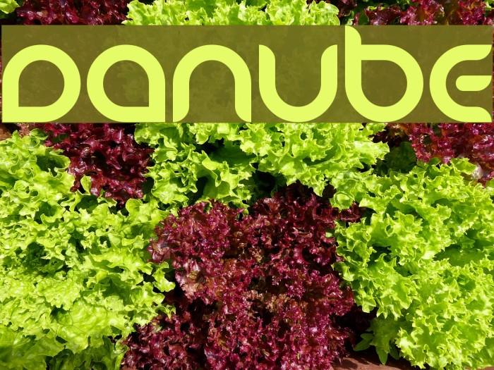 Danube Pro Bold Free Font