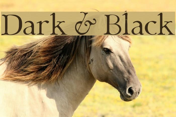 Dark & Black Font examples