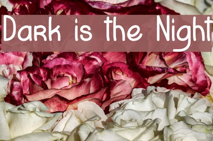 Dark is the Night Fonte examples