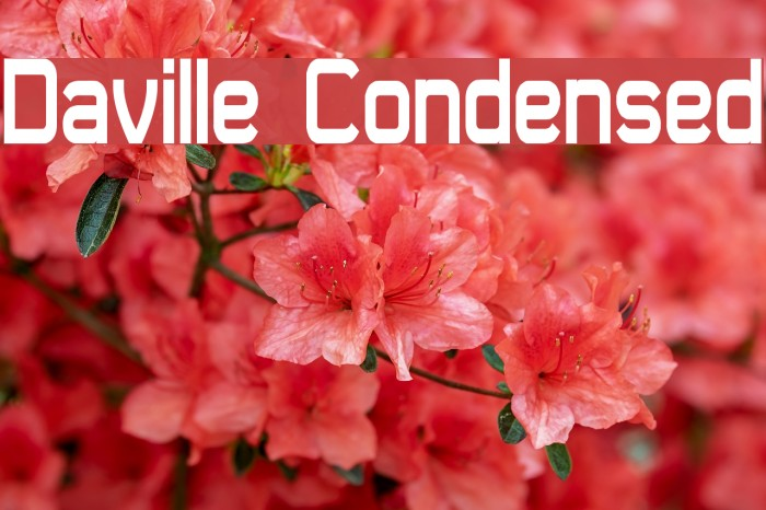 Daville Condensed Font examples