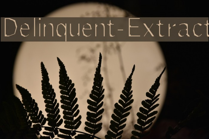 Delinquent-Extract Fonte examples