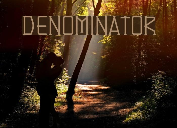 Denominator Schriftart examples