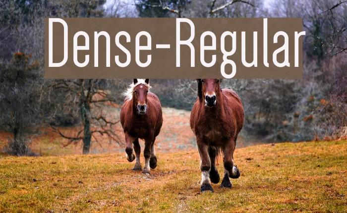 Dense-Regular Polices examples