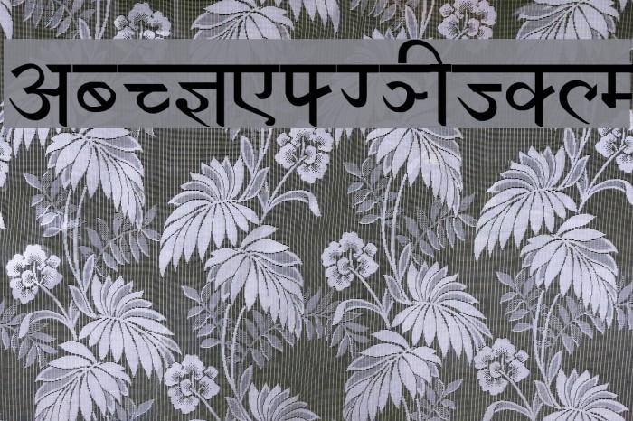 Devanagari New Normal Шрифта examples