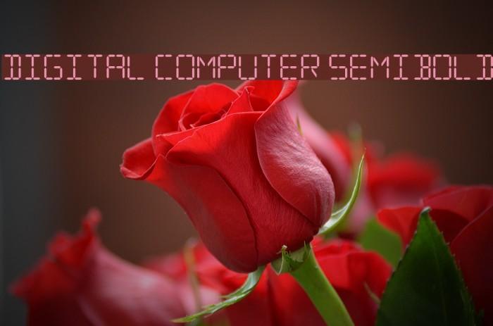 Digital Computer Semibold Fuentes examples