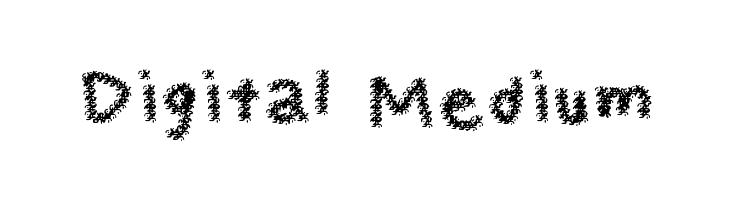 Digital Medium  Free Fonts Download
