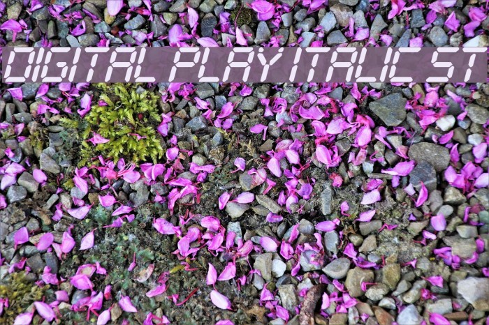 Digital Play Italic St Font examples