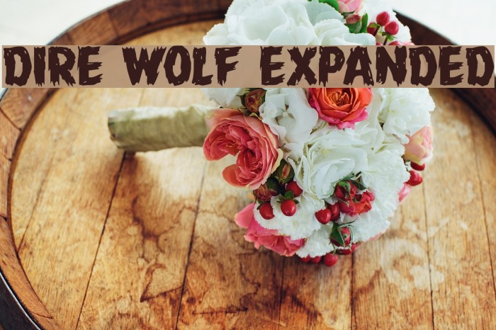 Dire Wolf Expanded Font examples