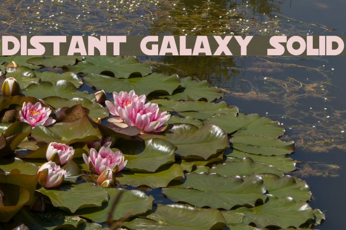 Distant Galaxy Solid Fonte examples