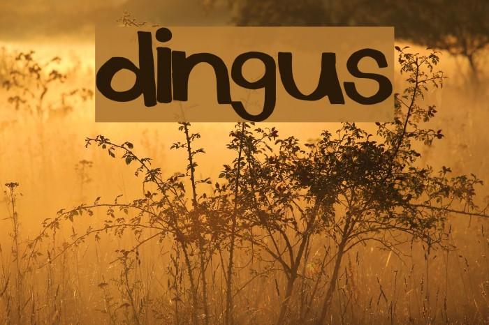 dingus Font - free fonts download