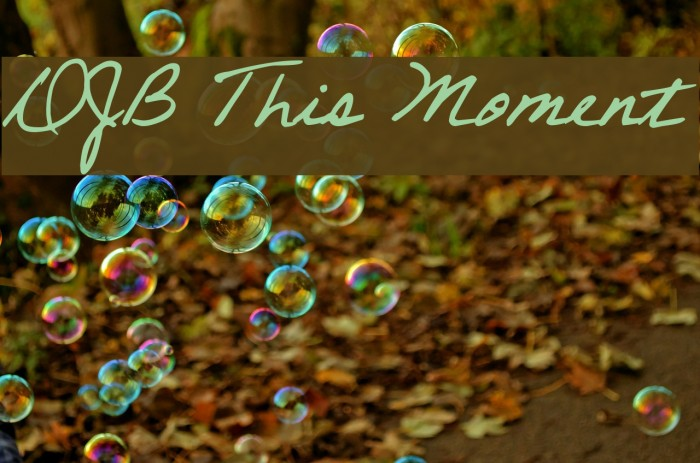 DJB This Moment Font examples