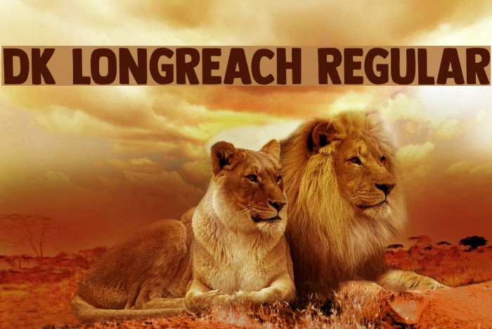 DK Longreach Regular Polices examples