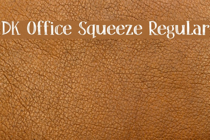 DK Office Squeeze Regular フォント examples