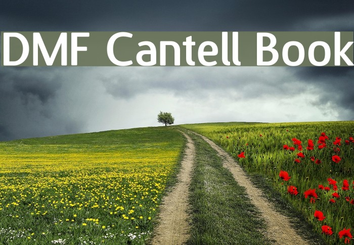 DMF Cantell Book Font examples
