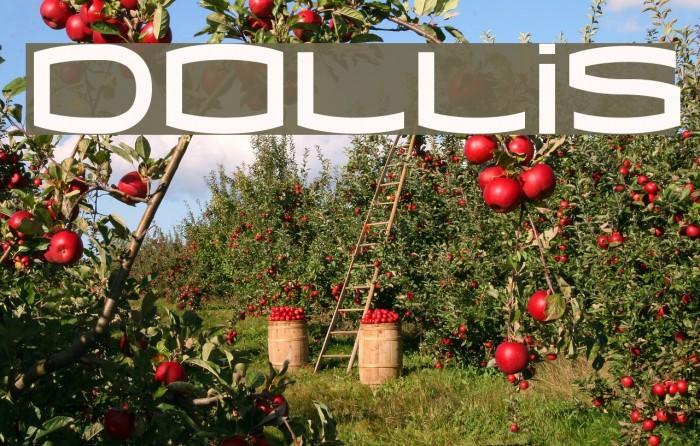 Dollis Font examples