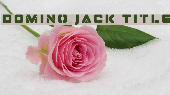 Domino Jack Title フォント examples
