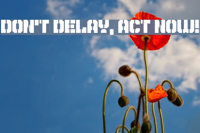 Don't Delay, Act Now! Caratteri examples