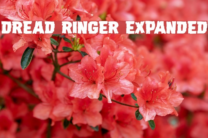 Dread Ringer Expanded Font examples
