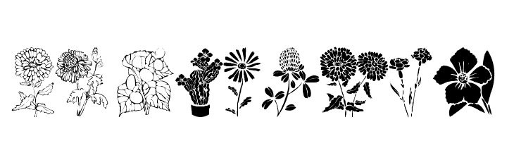 DT Flowers 1  Free Fonts Download