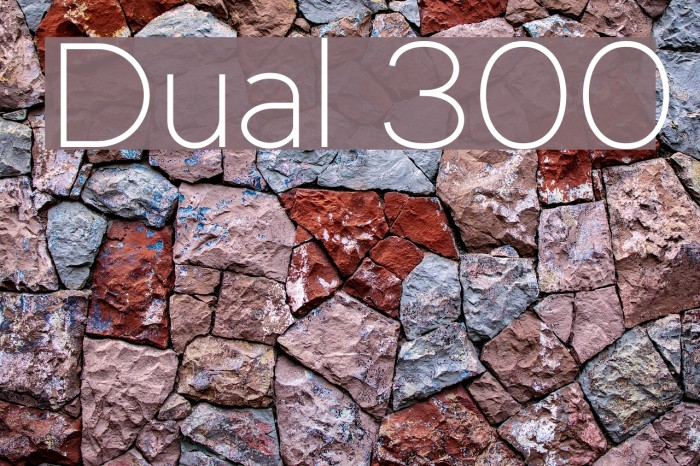 Dual 300 Polices examples