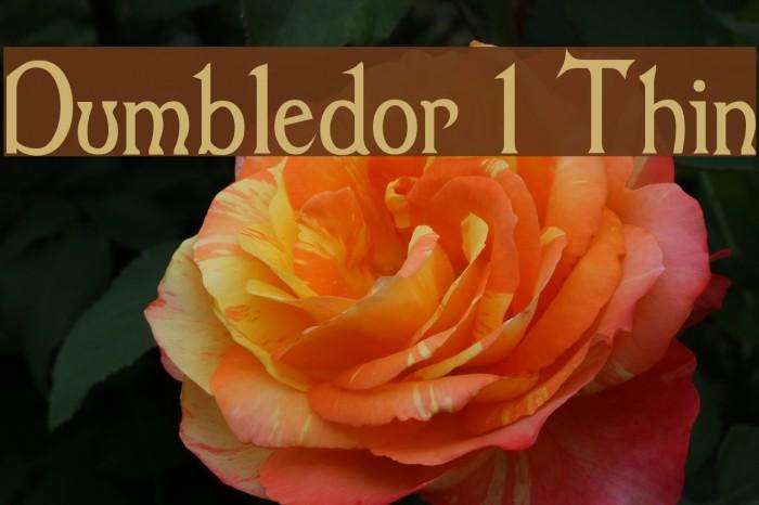 Dumbledor 1 Thin Font examples