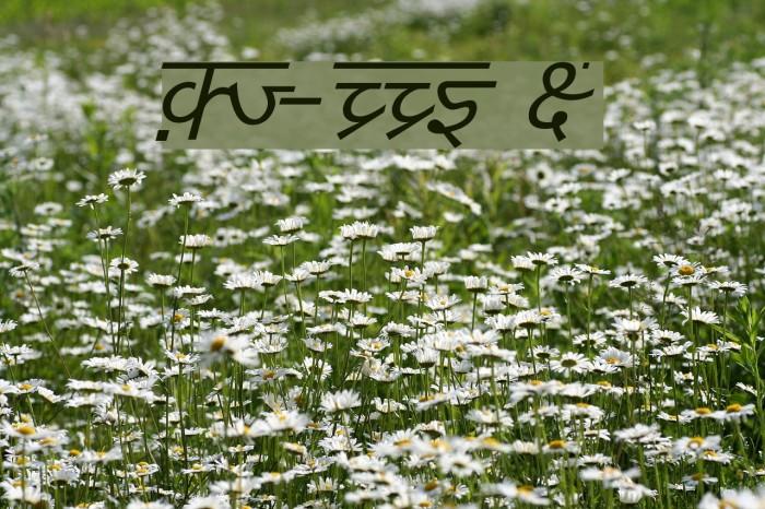 DV-TTYogesh Italic Font examples