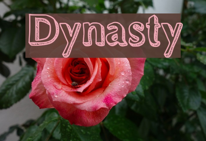 Dynasty Fonte examples