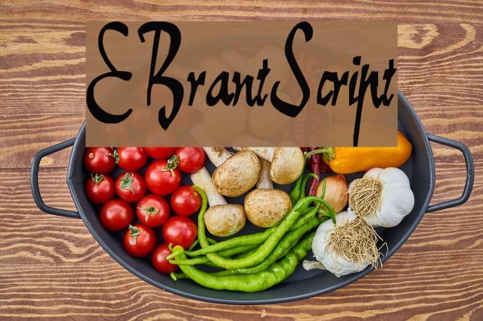 E-BrantScript Font examples