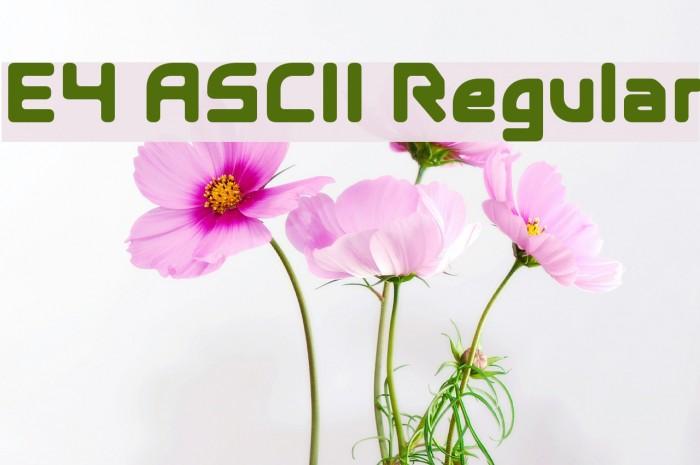 E4 ASCII Regular Fonte examples
