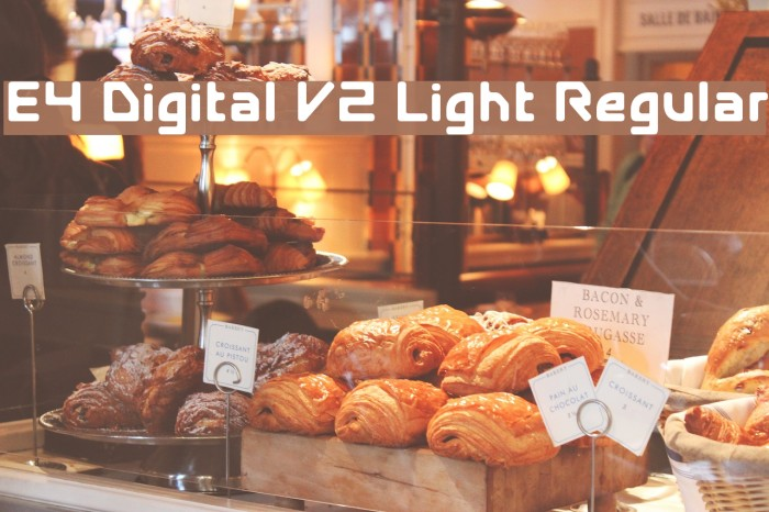 E4 Digital V2 Light Regular Font examples