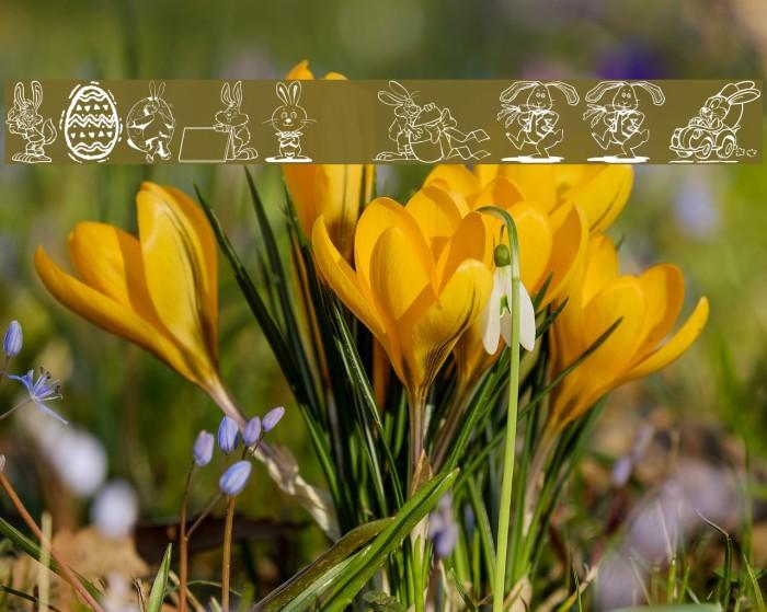 Easter Hoppy Шрифта examples