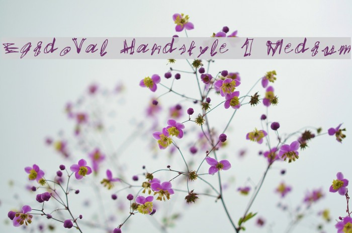 EgidoVal Handstyle 1 Medium Schriftart examples