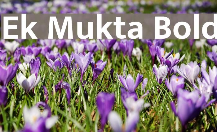 Ek Mukta Bold Font examples