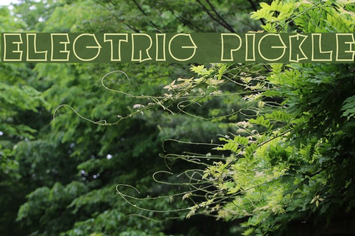 Electric Pickle Font examples