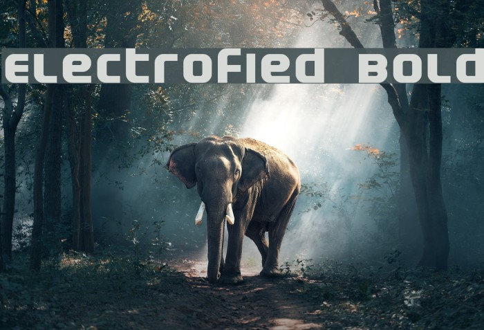 Electrofied Bold Fonte examples