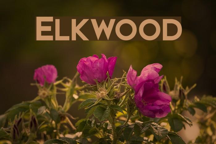 Elkwood Fonte examples